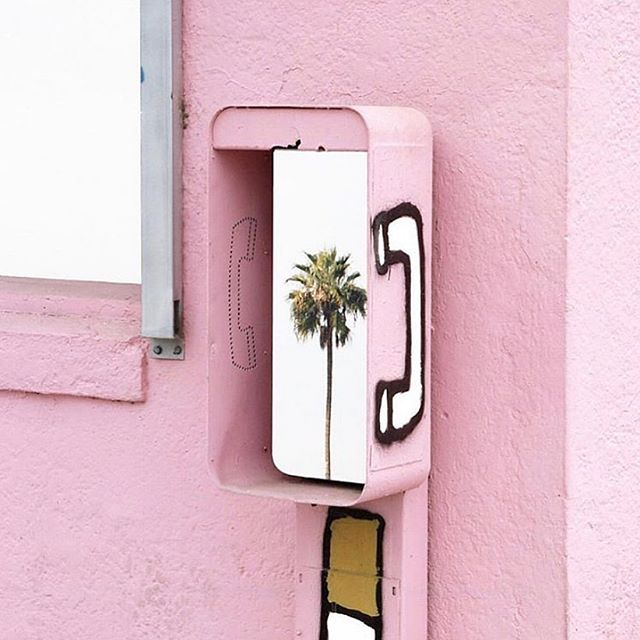 Summer 🌴 is calling ☎️! 📷: @bodegadude