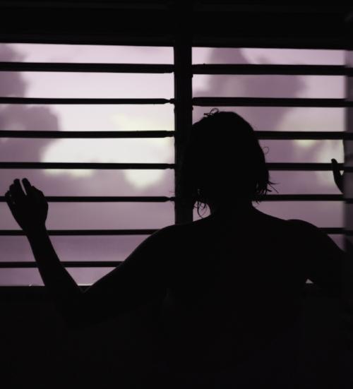 Windowpink.jpg