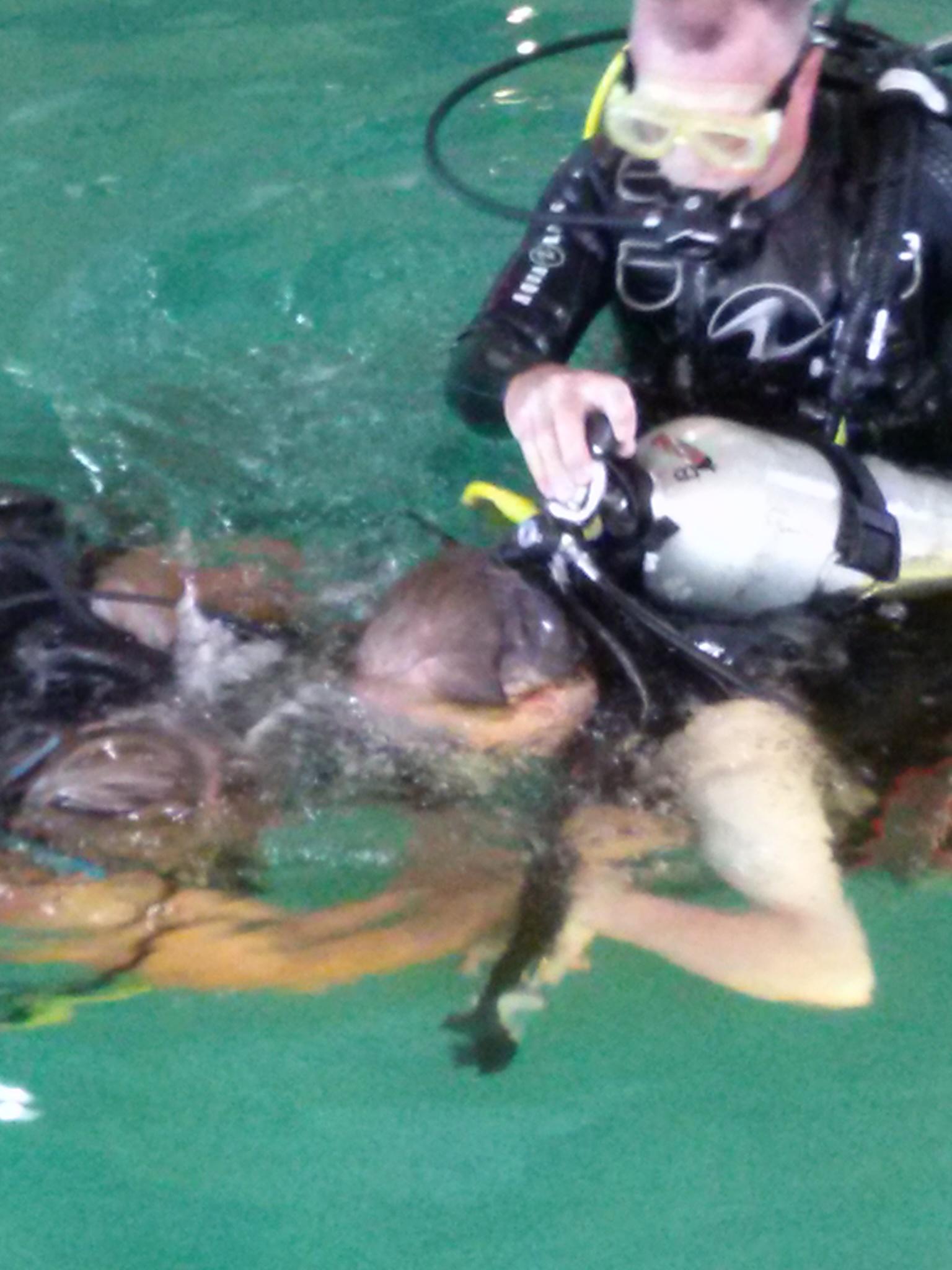 PHOTO: Matthew Going scuba diving.