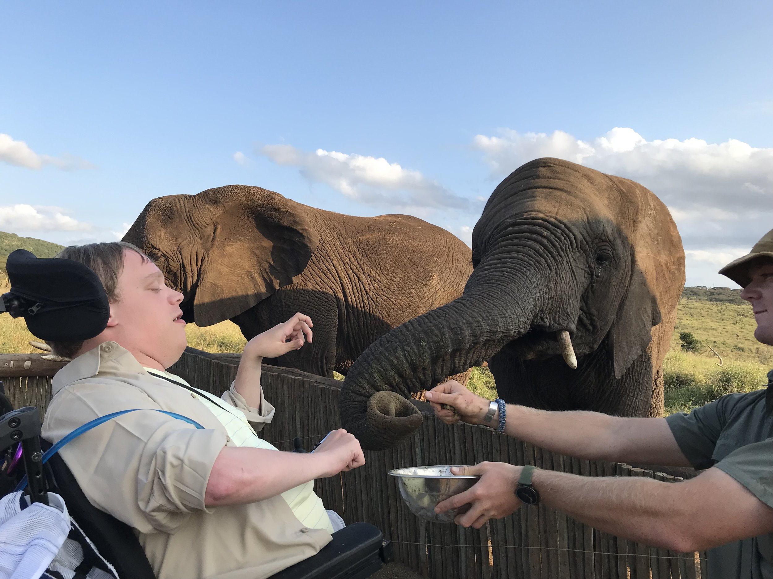PHOTO: One last picture.  Here is Matthew In South Africa In his wheelchair feeding some elephants some lunch.