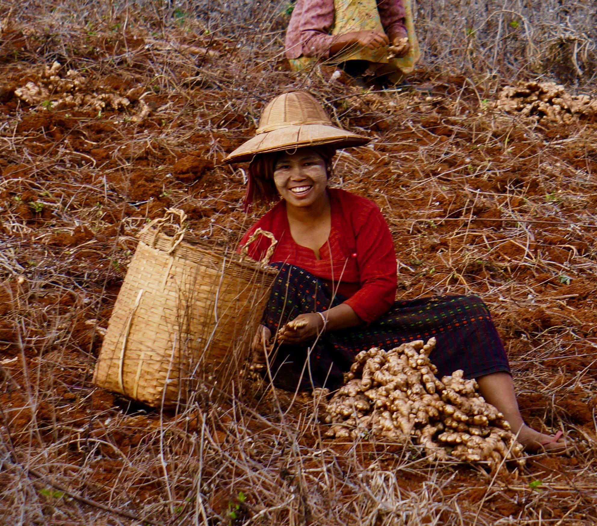 People-Girl in Field.jpg