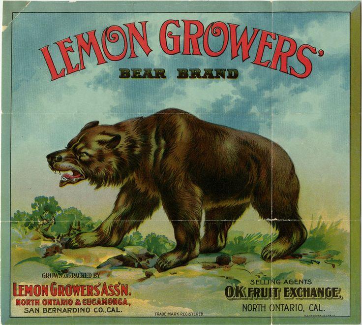 An advertisement for the Lemon Grower's Association, San Bernardino, CA.