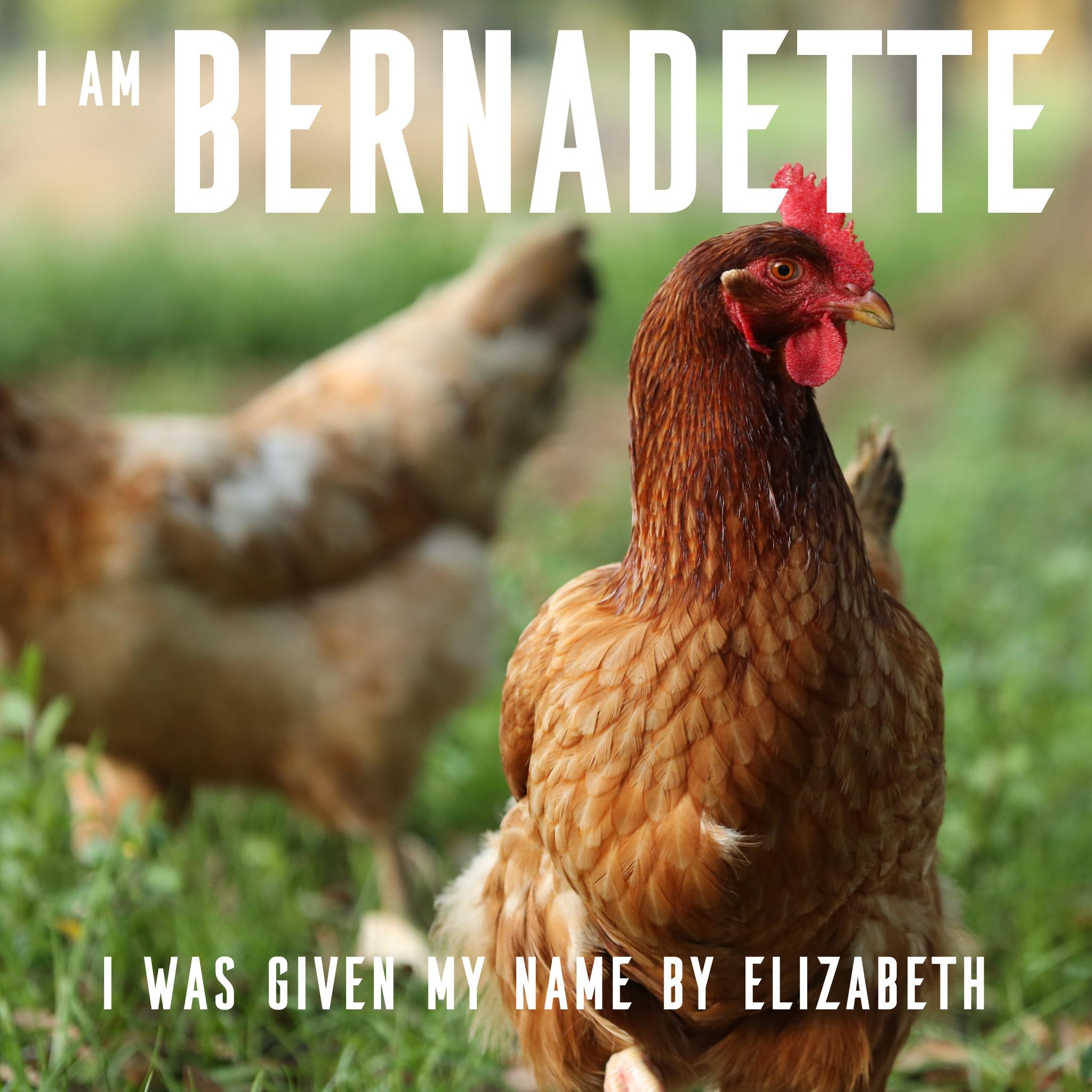 Bernadette 2.jpg
