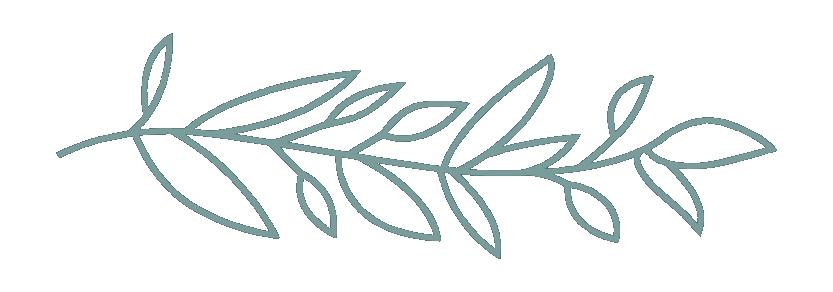 KNOX_smallbranch-02.png
