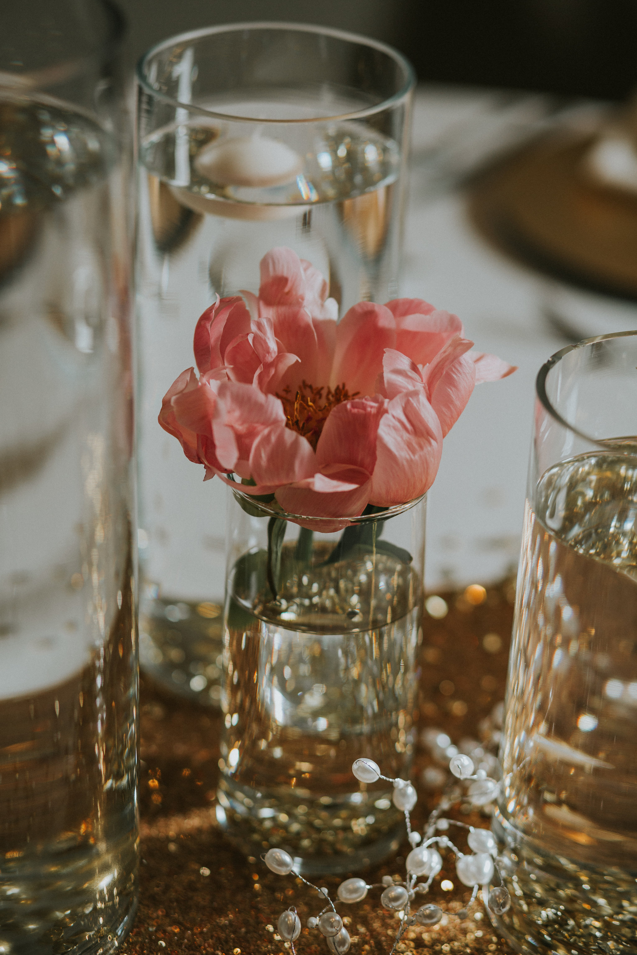 Chander Rose Peony .jpg