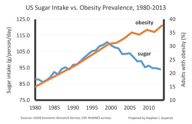 us sugar intake.jpg
