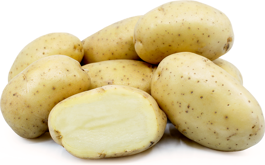 Organic Yukon Gold potatoes $1.59/lb -
