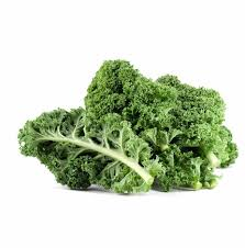 ORGANIC kale $1.99/bunch - Locally grown!