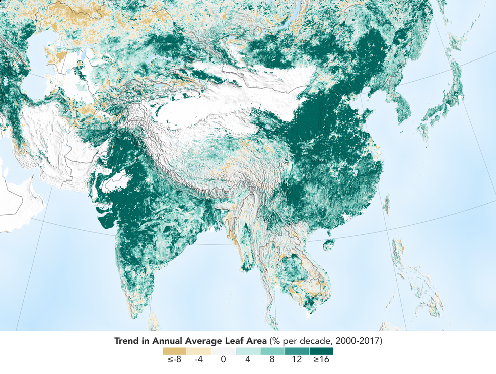 Over the last two decades, the Earth has seen an increase in foliage around the planet, measured in average leaf area per year on plants and trees. Data from NASA satellites shows that China and India are leading the increase in greening on land. The effect stems mainly from ambitious tree planting programs in China and intensive agriculture in both countries.    Credits: NASA Earth Observatory      [Image and caption copied directly from the NASA Ames Research Centre article linked below]