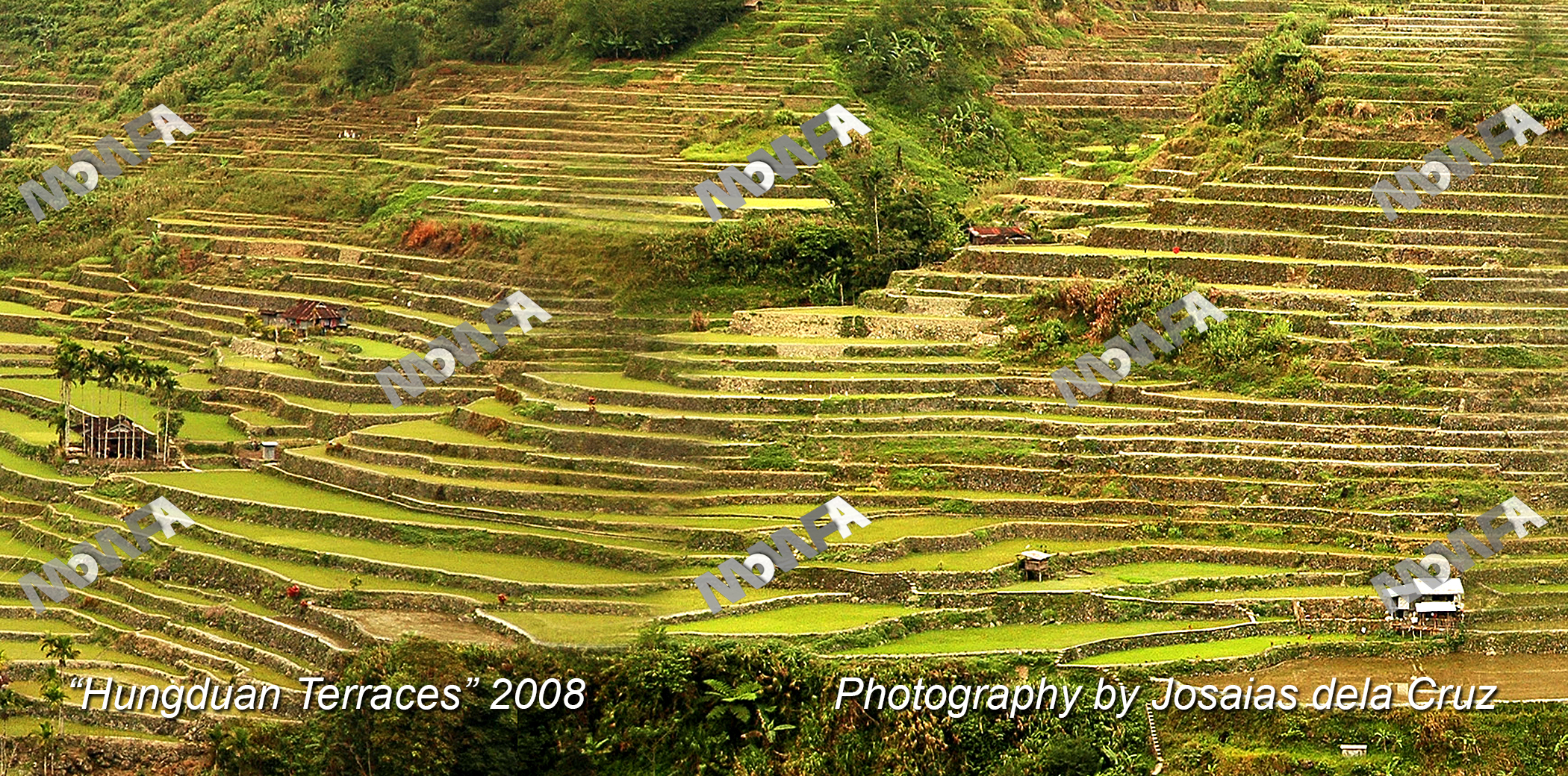 05 Hungduan Terraces wmc.jpg