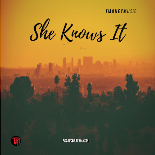 "I love this song so much.  ""She Knows It"" is a track I made in the last months of 2018.  I wanted to make a pop/funk track that could bring a smile to your face when you hear it."