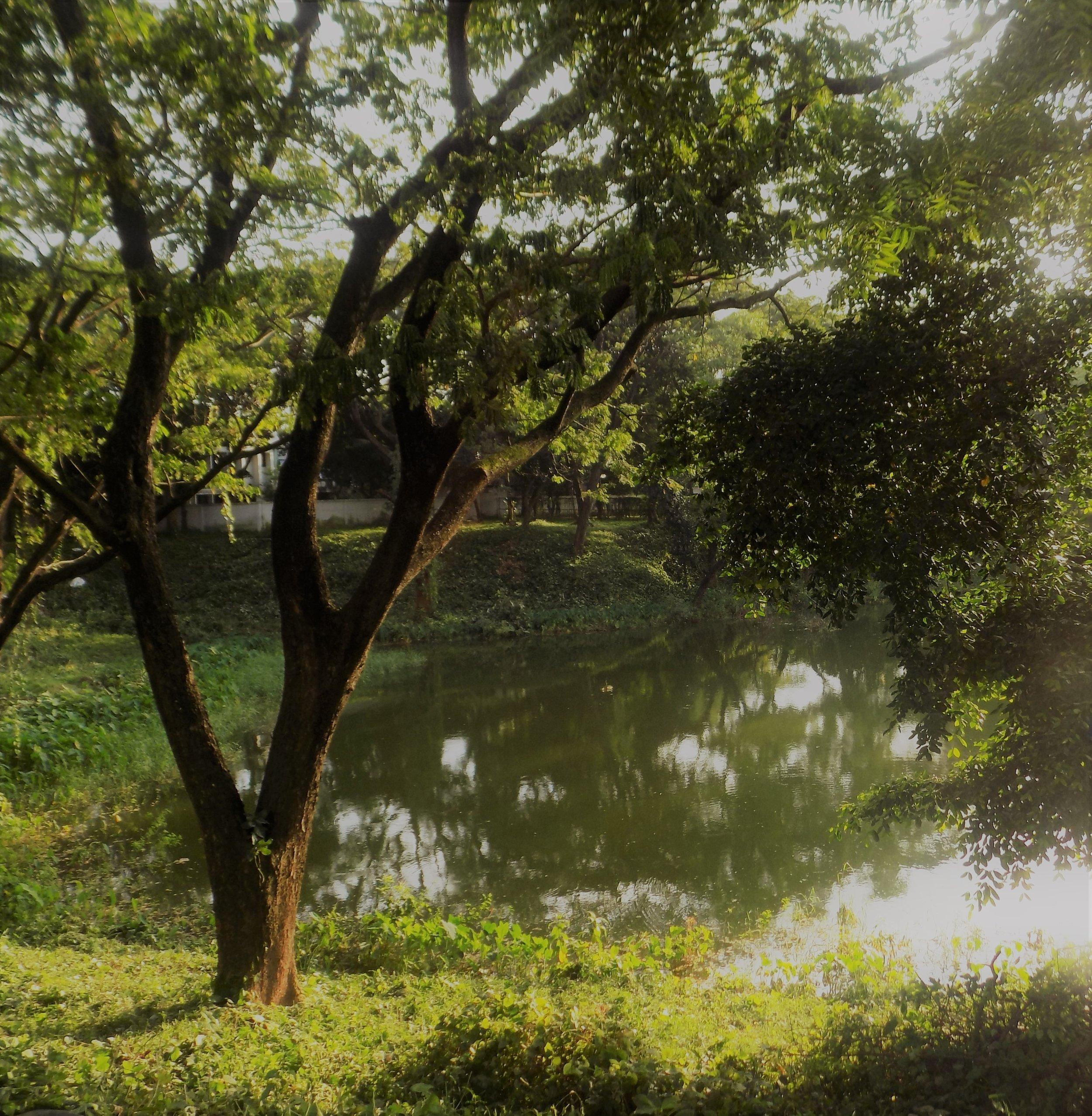 moss lake.jpg