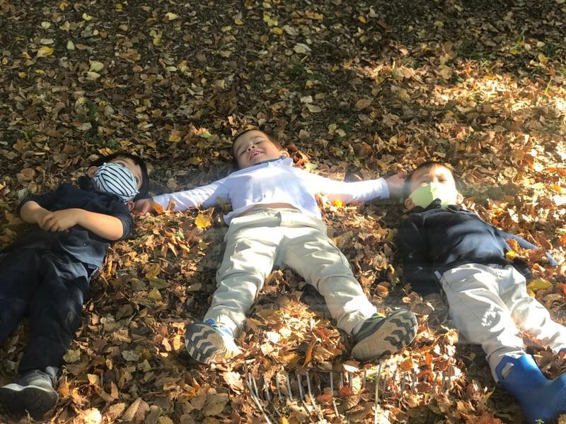 Nature is Nurture — Crossway Montessori Forest School