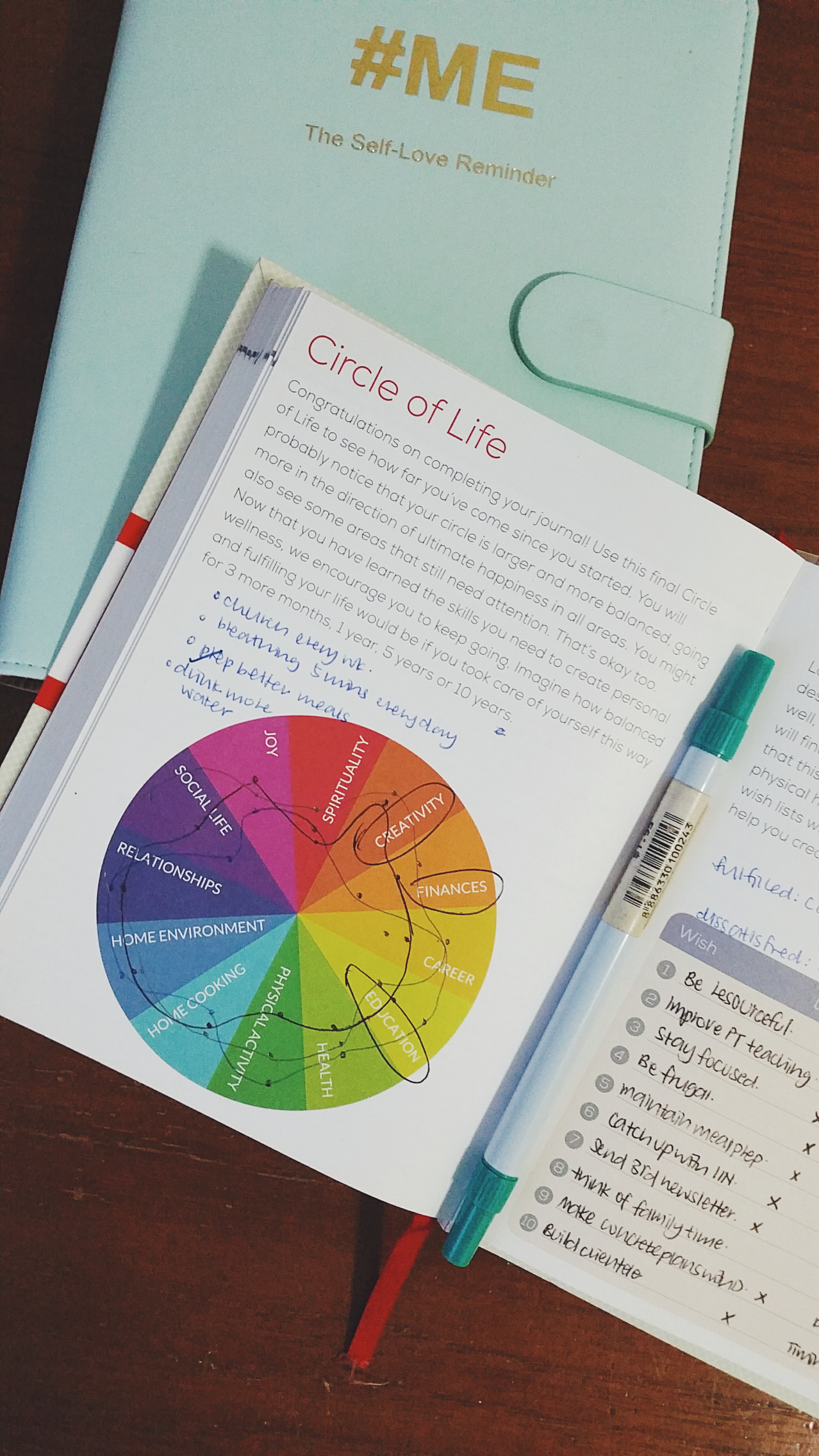 Circle of Life - The circle of life is a tool used by the Institute of Integrative Nutrition to help us discover the primary important areas of our life that embodies happiness.