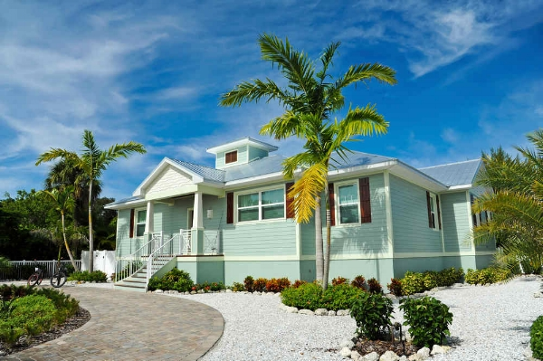 house with palm tress in driveway