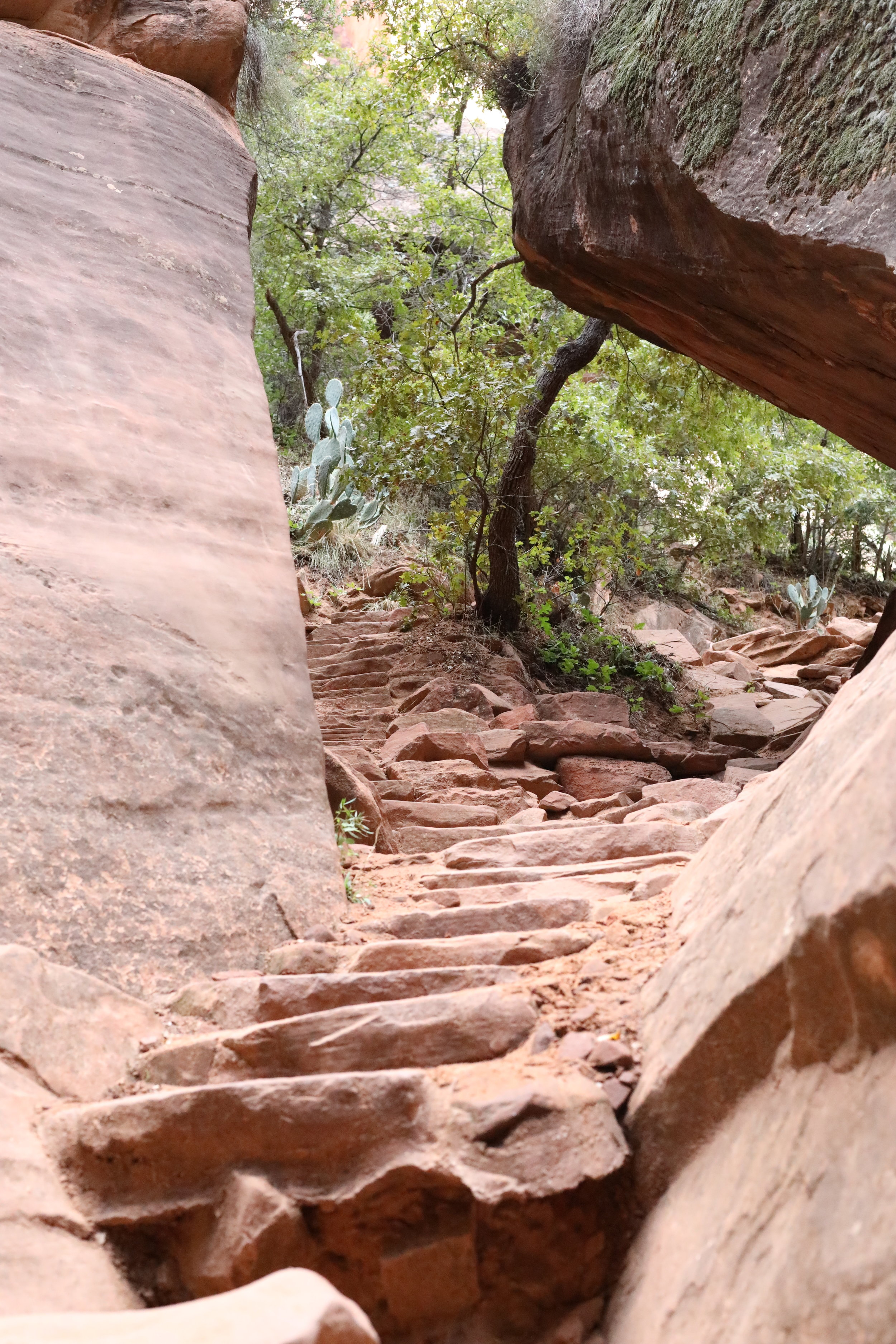 Read Rock Stairs On Emerald Pools Hike