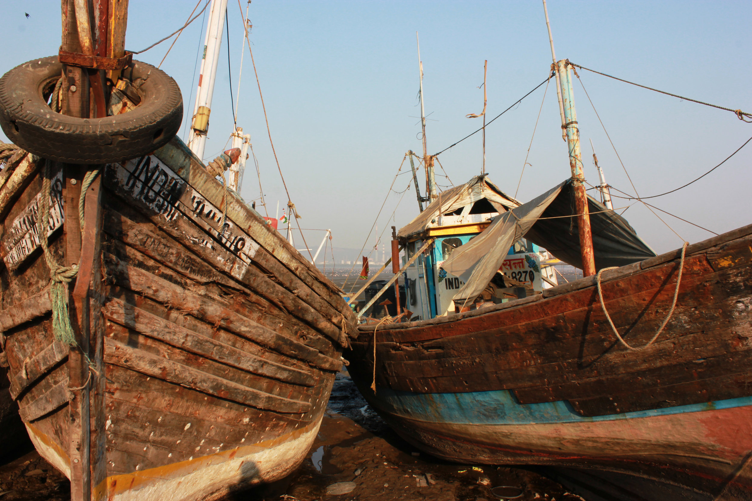 boats4.jpg