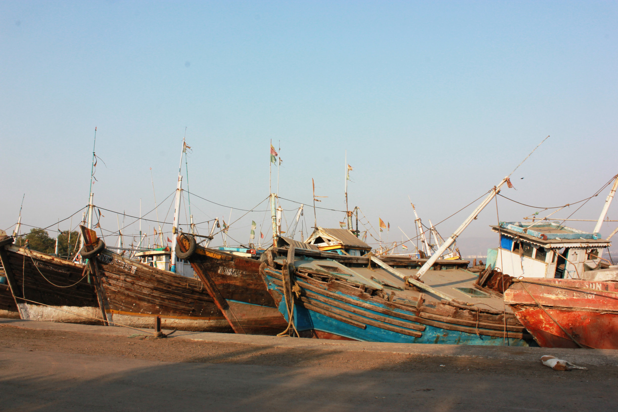boats_sewri.jpg
