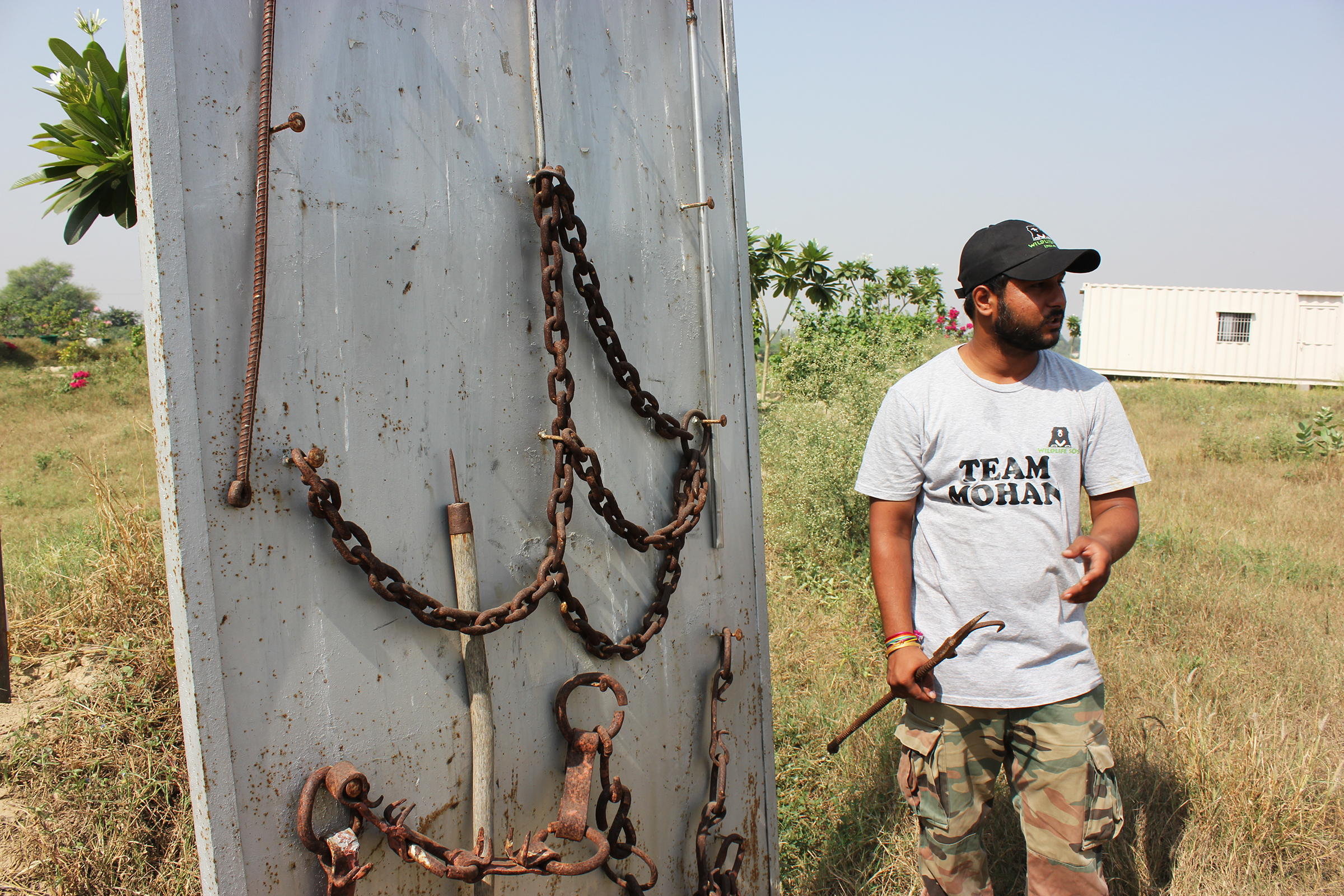 This is Hari Singh, Education Officer at Wildlife SOS, showing us the torturous bullhooks and chains used on the elephants prior to being rescued. Hari left an aeronautical engineering career to come to Wildlife SOS and work with the elephants. He told me that the personal satisfaction that he gets from his work with Wildlife SOS far surpasses what he was doing before.