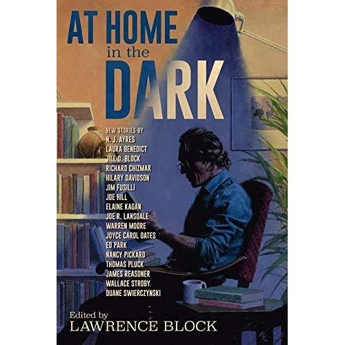At Home in the Dark cover.jpg