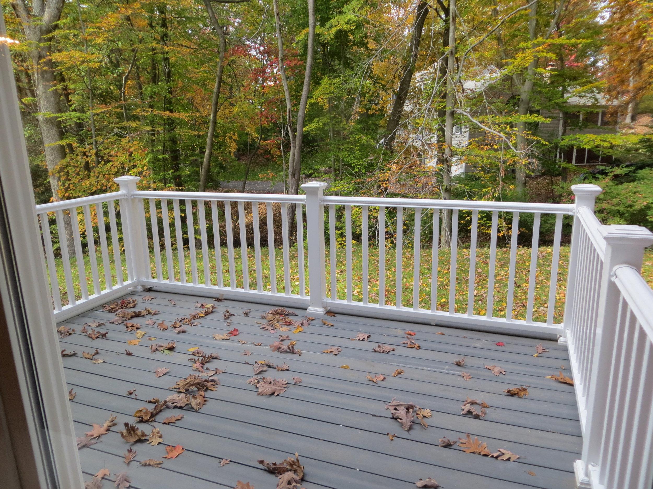 2014 10 31st Carl's House & Yard (5).JPG