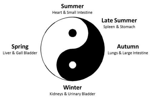 yinyang_seasons.jpg