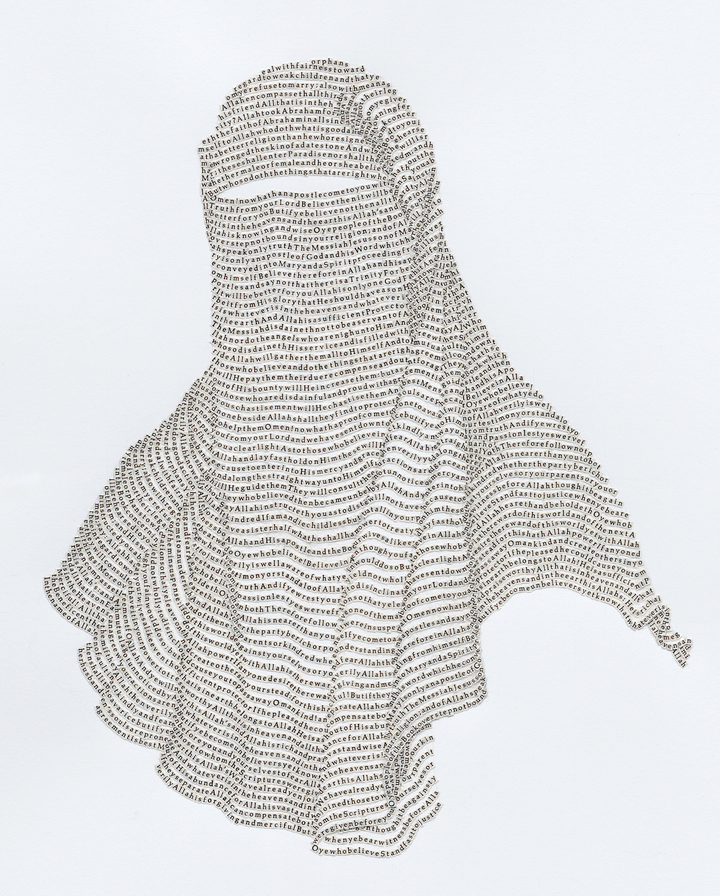 Niqab No. 3 (detail).jpg