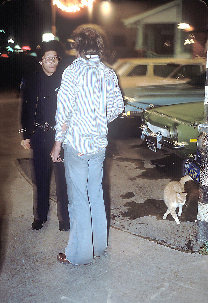 Busted with stray cat