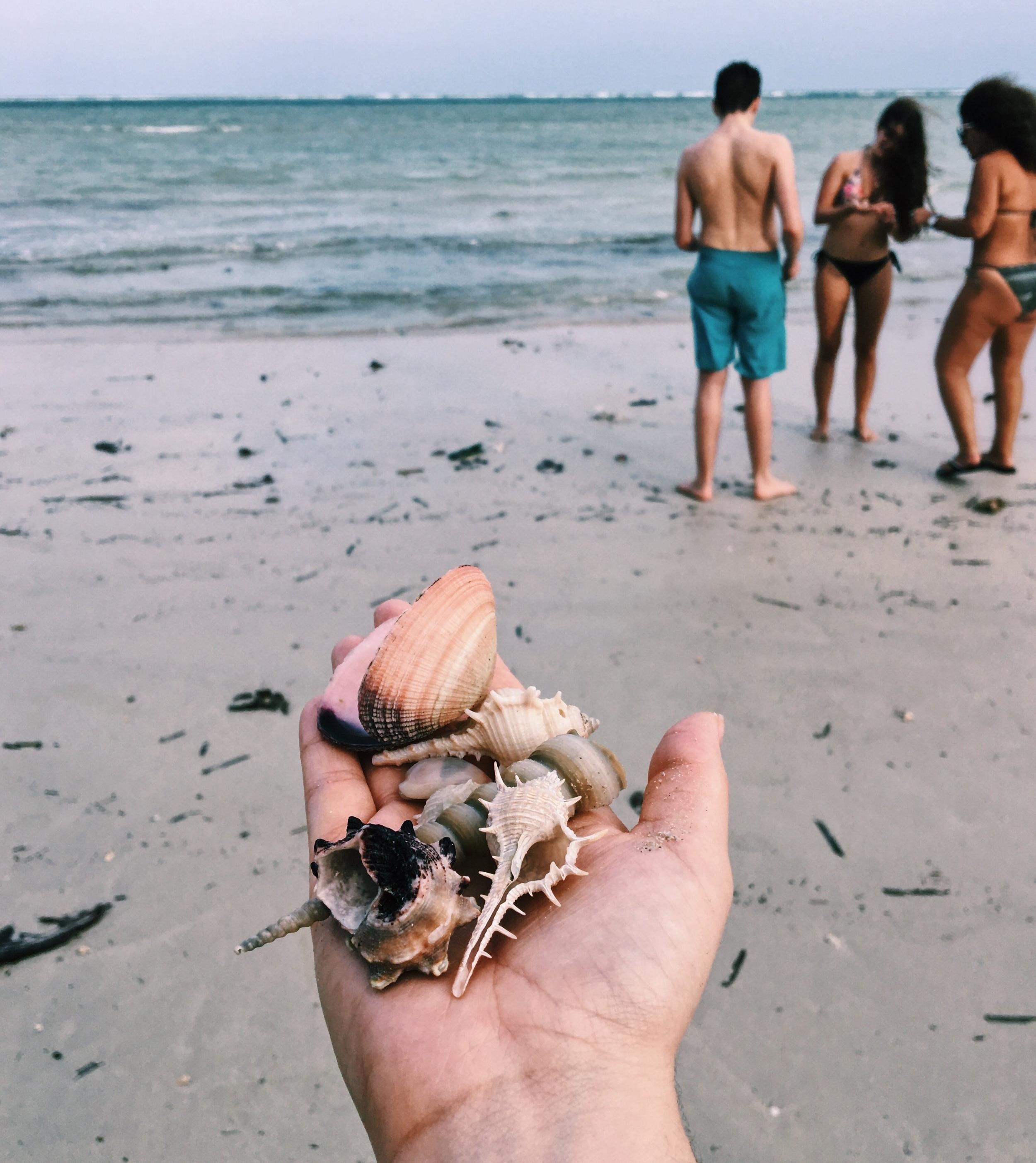 Shiva Beach