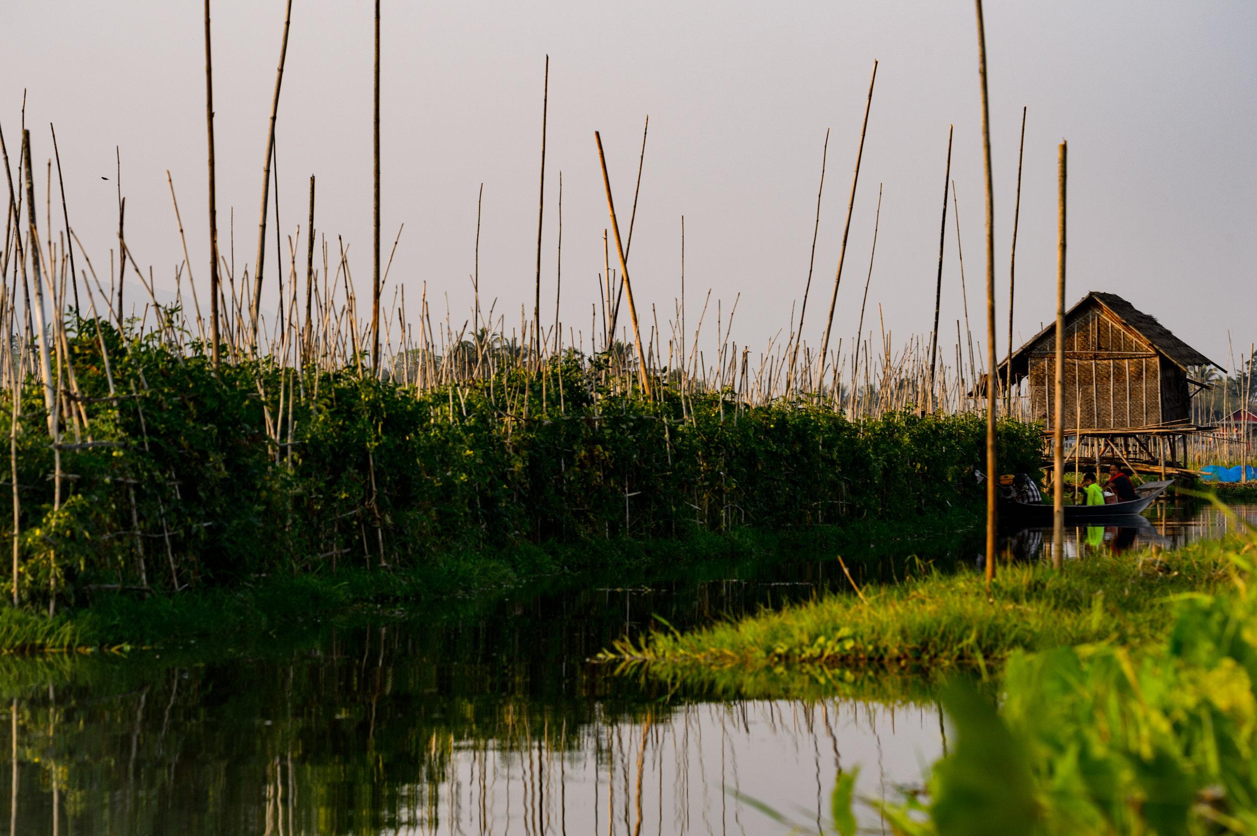 Inle_Lake-00213.jpg