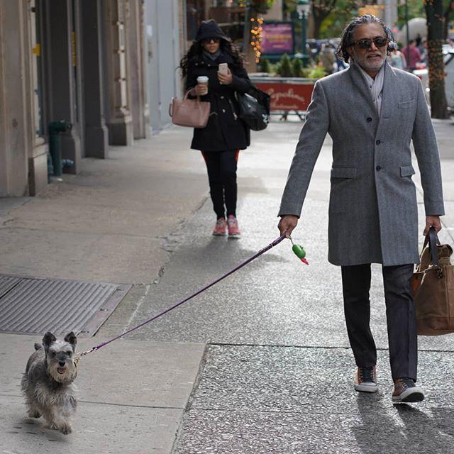अपने प्रिय कुत्ते के साथ, पास्चा. Thanks for the photography, @diana_foxy !