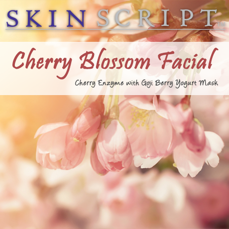 Spring brings new flowers with the anticipation of juicy fruit to follow. Fruit not only provides our body with nourishment, but also brightens our skin. Blending cherries with a yogurt mask, such as the Goji Berry Yogurt Mask will create a blossoming facial sure to brighten and hydrate the skin. Exfoliate and brighten the skin with the antioxidant and brightening benefits of the Cherry Enzyme. Contains 5% lactic acid, 5% mandelic acid, and 1% arbutin and 1% kojic. Perfect for normal and combination skin. It promotes deep hydration that protects from environmental damage while relieving the surface signs of aging. Arbutin and kojic provide extreme lightening capabilities. Goji Berry Yogurt Mask will nourish the skin with goji berry and yogurt resulting in a beautiful, healthy glow.