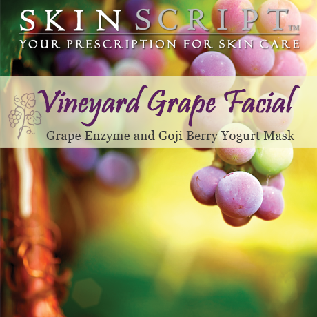 The Vineyard Grape Facial is perfect for normal and sensitive skin and is comprised of a Grape Enzyme, and the Goji Berry Yogurt Mask. The grape enzyme contains grapes and papain for very gentle exfoliation. It promotes exfoliation and protection from environmental damage while relieving the surface signs of aging.  The Goji Berry Yogurt Mask contains Goji Berry which helps in rebuilding the skin by stimulating biosynthesis, fibroblast proliferation and by inhibiting MMP's.  Anti-aging results can be seen by the reduction of lines and wrinkles in addition to an improvement in the skin's elasticity.  Yogurt moisturizes, smoothes and stimulates cellular regeneration.