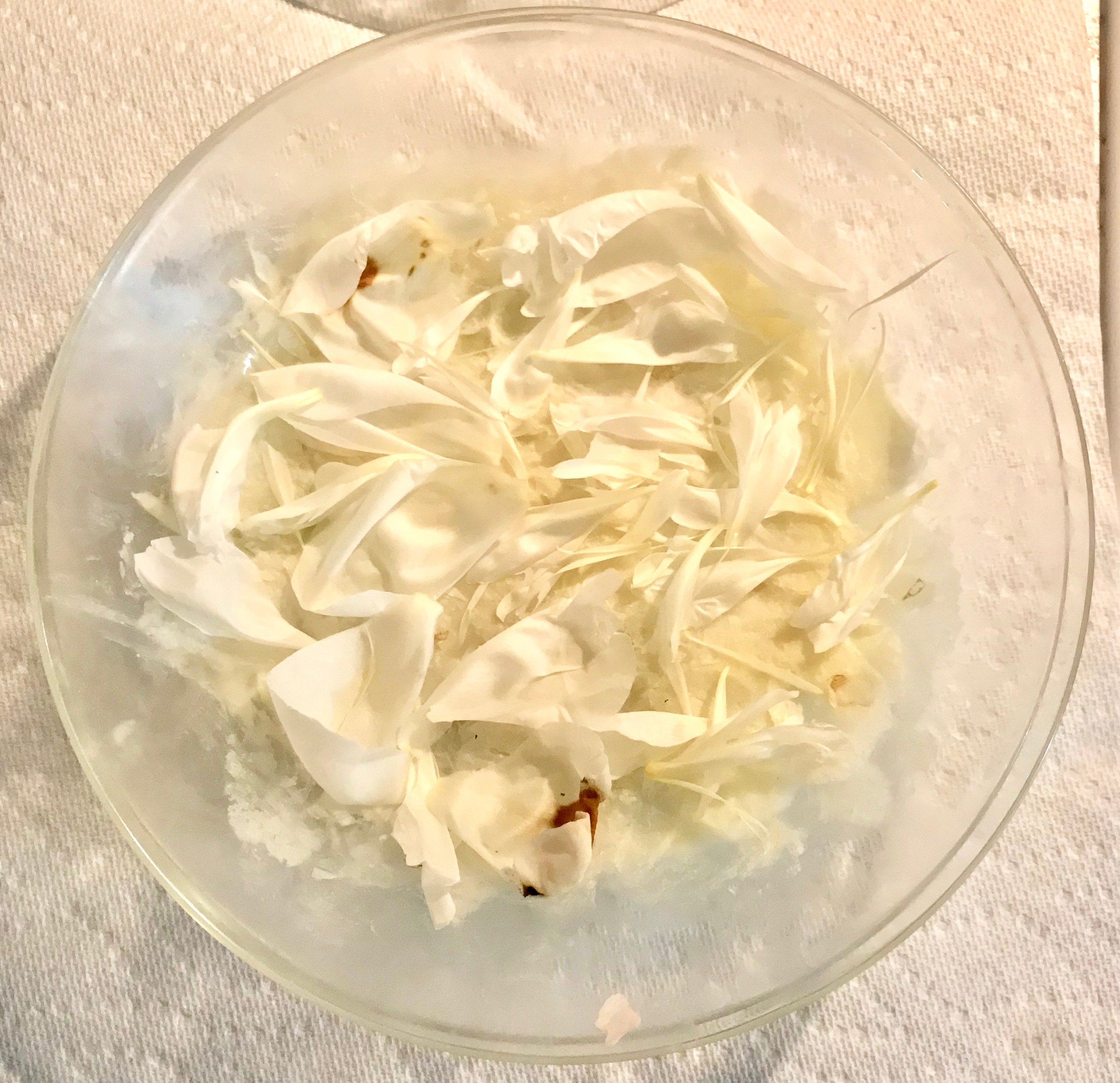 Second layer of fresh white peony petals.