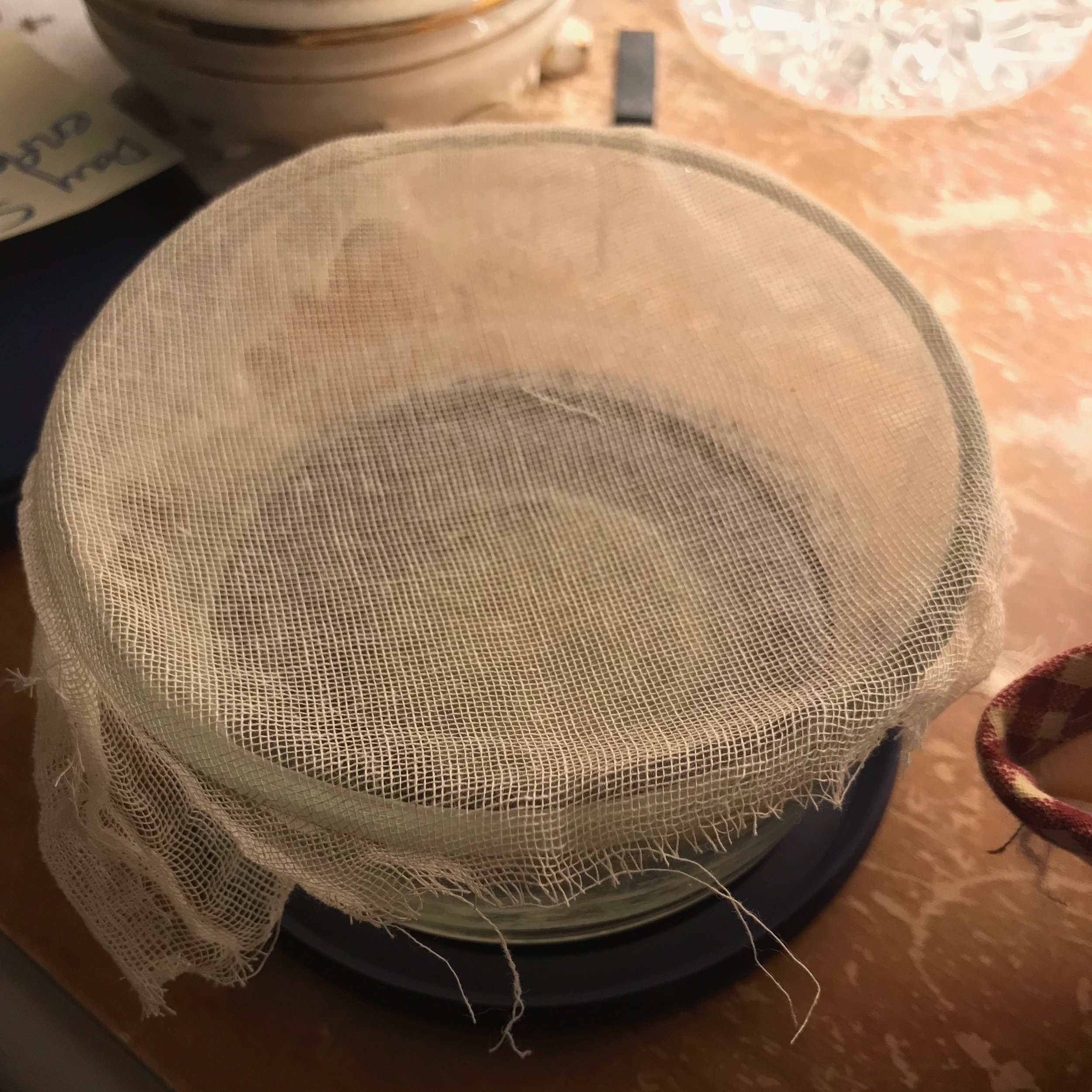 Alcohol in pyrex container with cheesecloth on top.