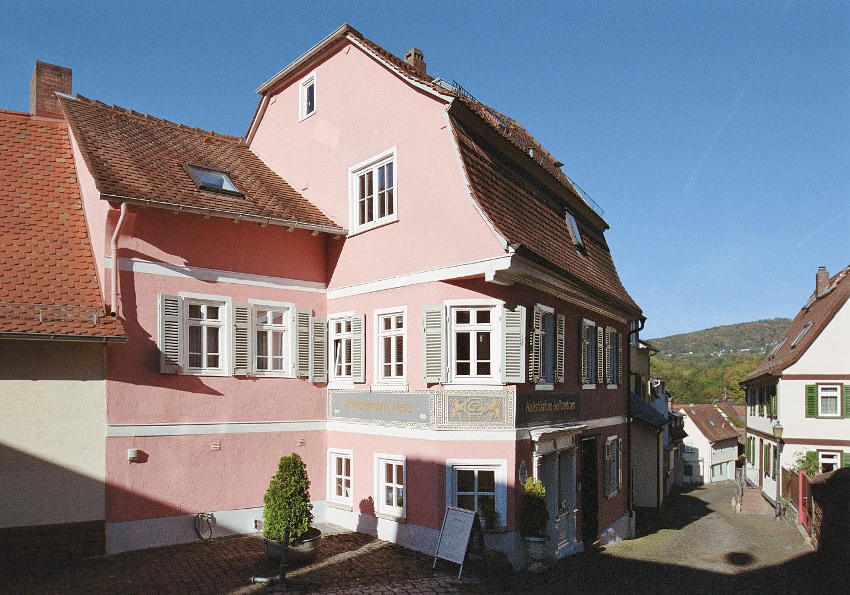 2018-09-25-1986-pink house kronberg.jpg