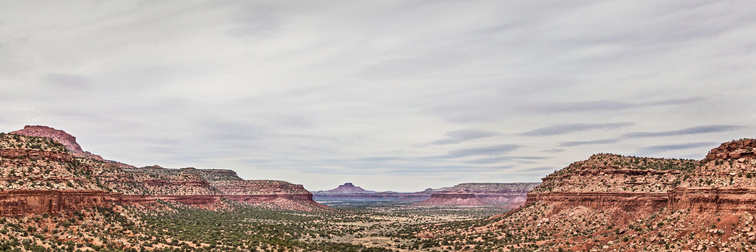 MG_3893_from_panorama_3x1_Fry_Canyon - looking westward from FC.jpg
