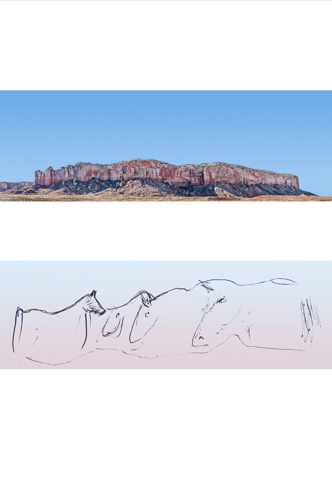 Jonah Yellowman's Mesa   Bears Ears Country
