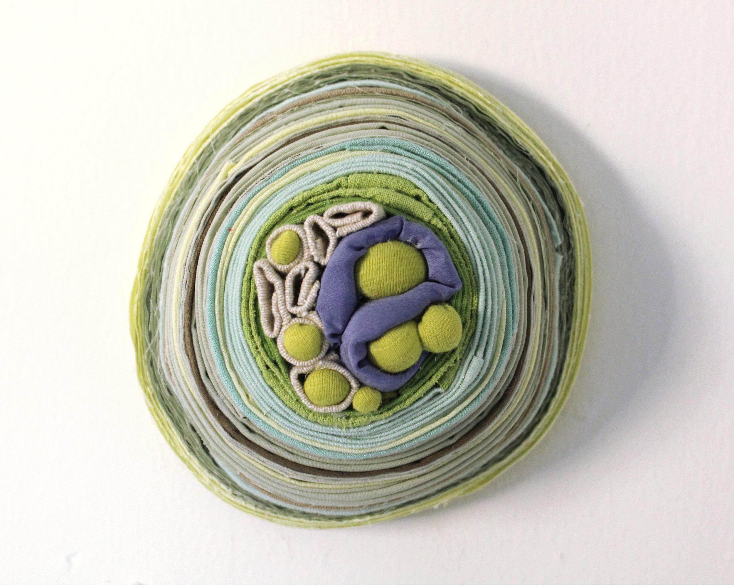 "Ormosia, 2011   reclaimed fabric   5.5"" x 6"""