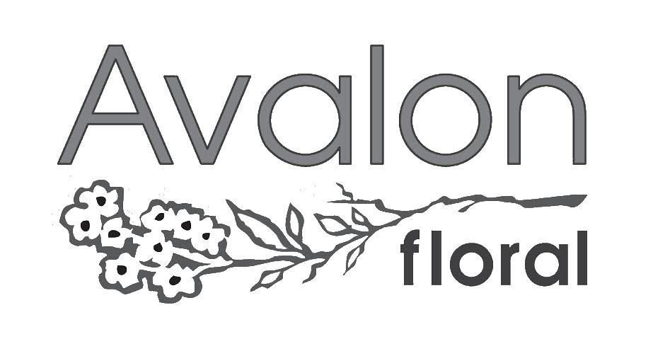 Avalon-Black.png