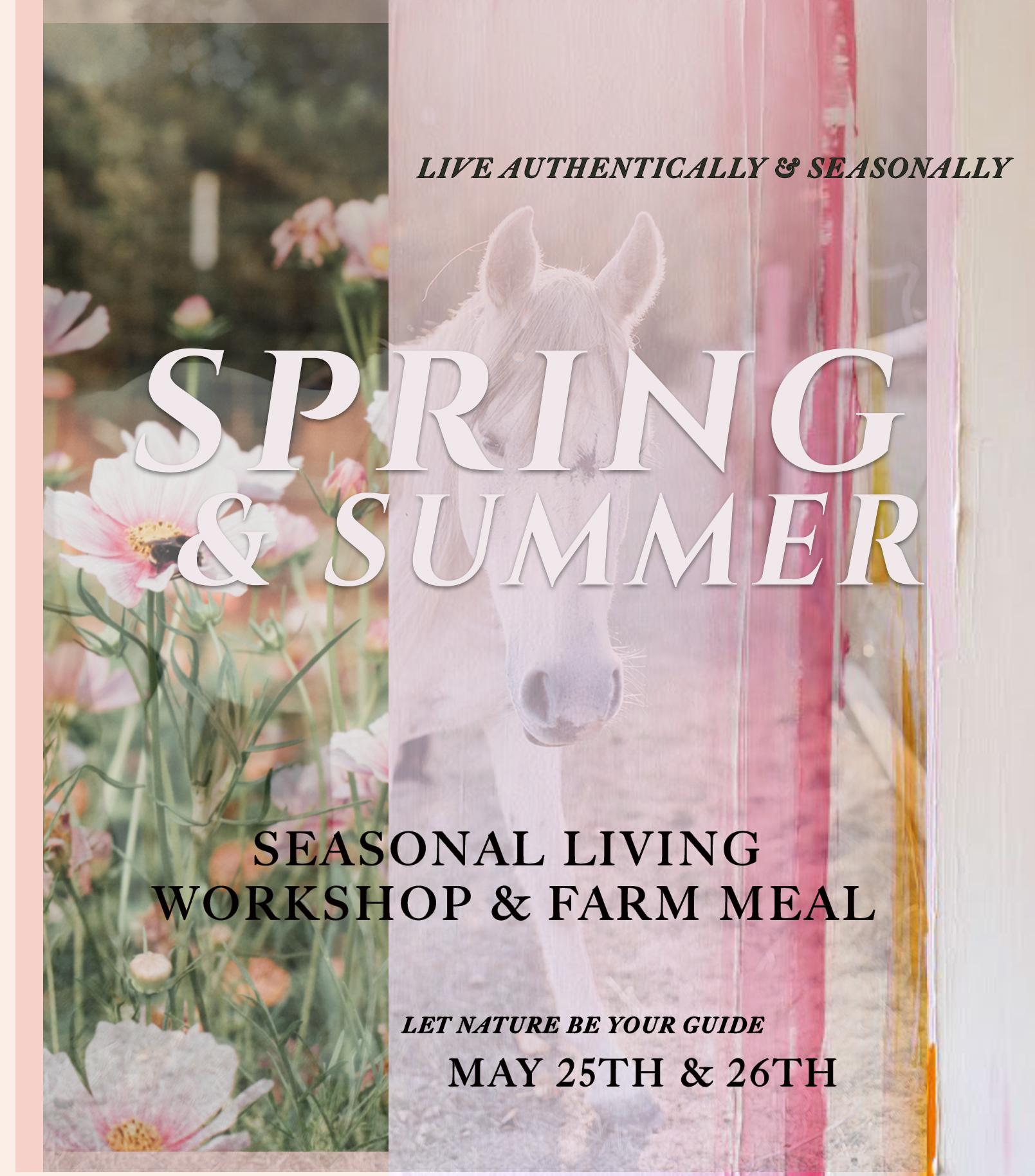SPRING SUMMER WORKSHOP