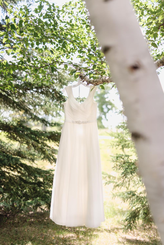Summer Backyard Lakeside Wedding   Fargo Wedding Photography