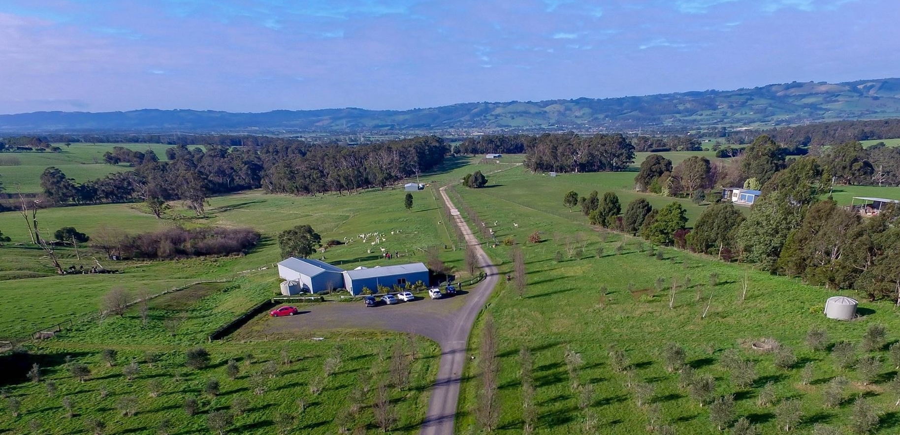 Aerial View of Nickelby At Darnum; part olive grove, shop, section of the farm and the Strzelecki Ranges