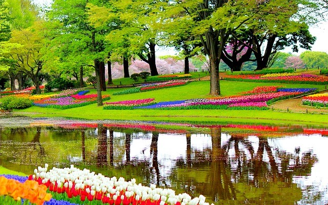 Park with garden of flowers