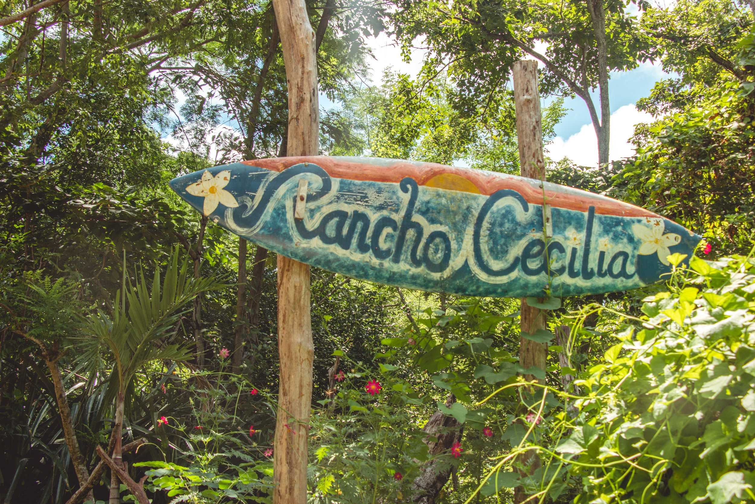 Rancho Cecilia (1 of 1)-2.jpg