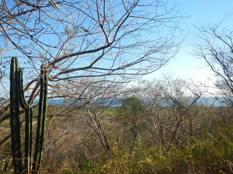 Eco Lodge For Sale Nicaragua 9.jpg