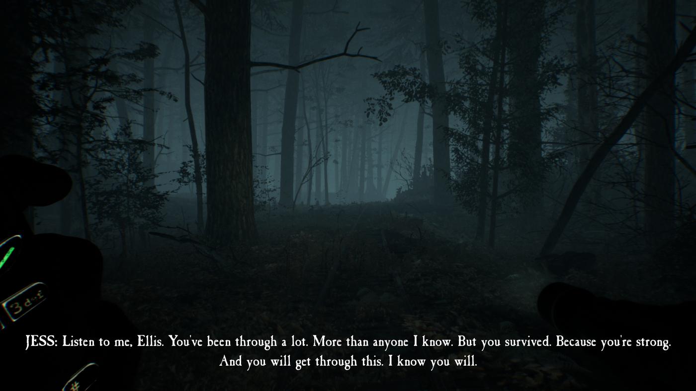 Blair Witch (3).jpg