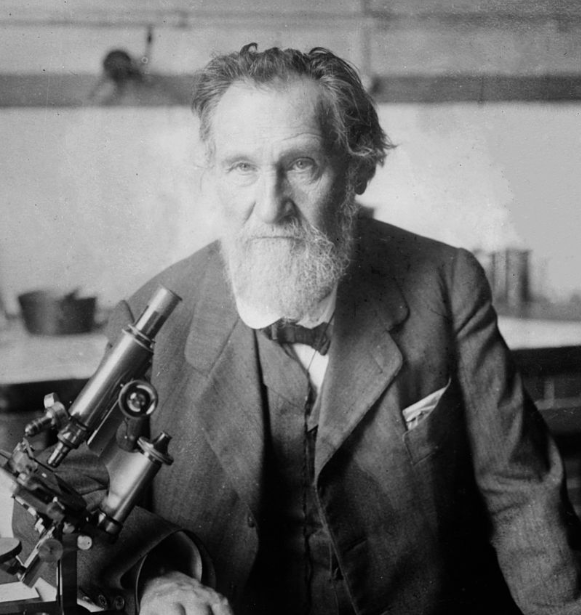 It's not the dairy it's you - Elie Metchnikoff suggested over 100 years ago that as putrefaction within the bowel occurs, function and immunity is compromised