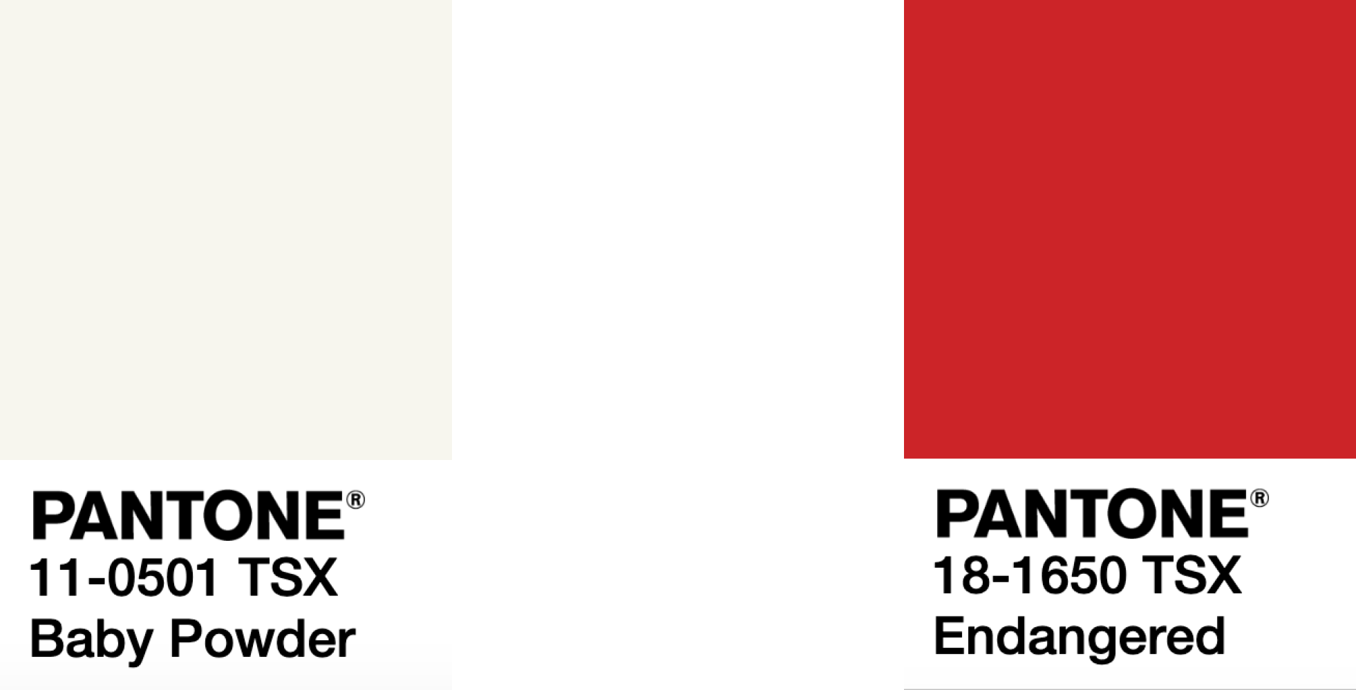 Abandoned Runner OS V. 1.2 - PANTONE 18-1650 TSX EndangeredPANTONE 11-0501 TSX Baby Powder