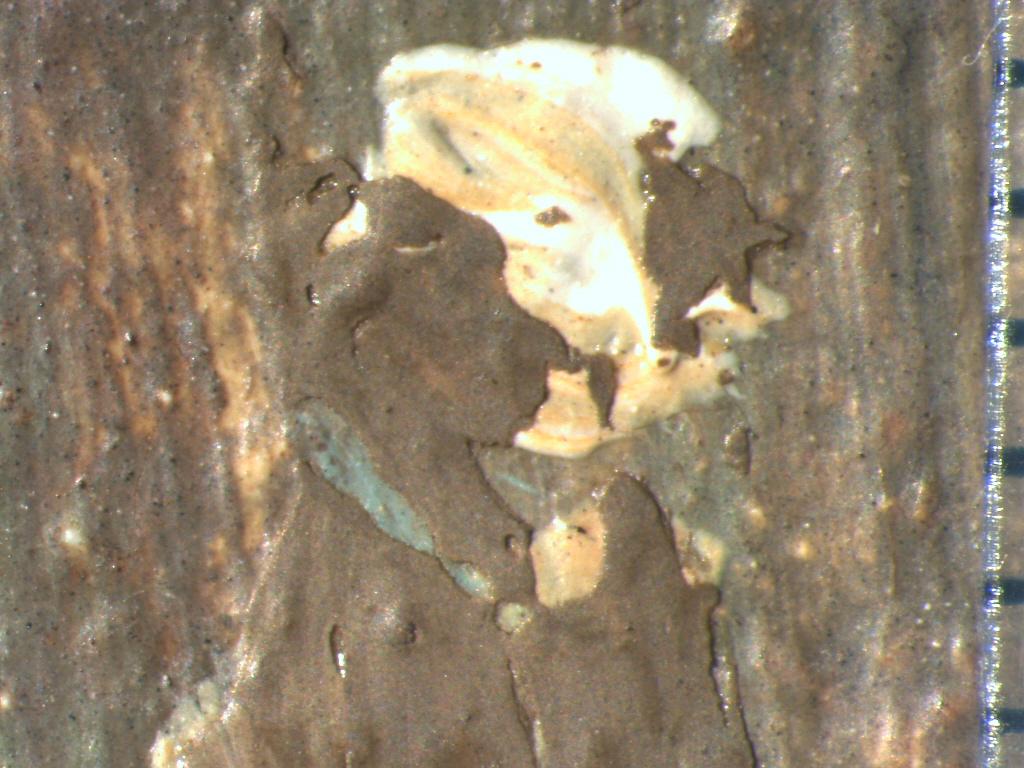 Hoofd figuurtje voor verwijdering overschildering